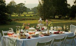 ワイルド ストロベリー アルフレスコ コレクションは夏の午後をイメージしたシリーズ