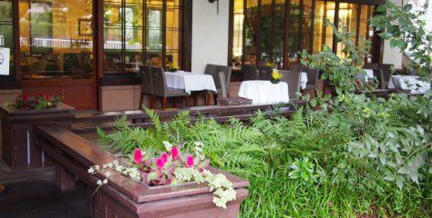 <乃木坂>ホットケーキがとっても美味しくて、紅茶のおかわりも出来る!「ウエスト青山ガーデン」
