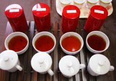 本気で紅茶のテイスティングが正確に出来るようになりたい方へ