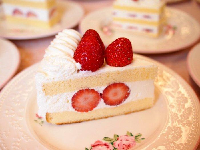cozycorner shortcake3