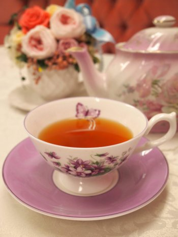 sadaharuaoki cassisier nilgiri tea1