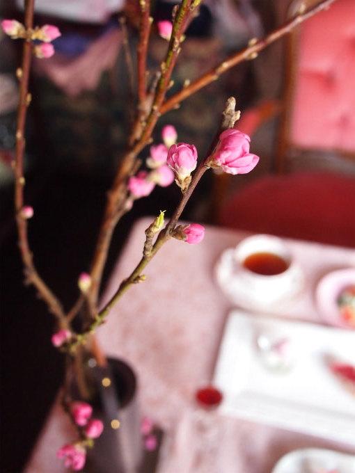 桃の節句なので桃の花も用意しました。