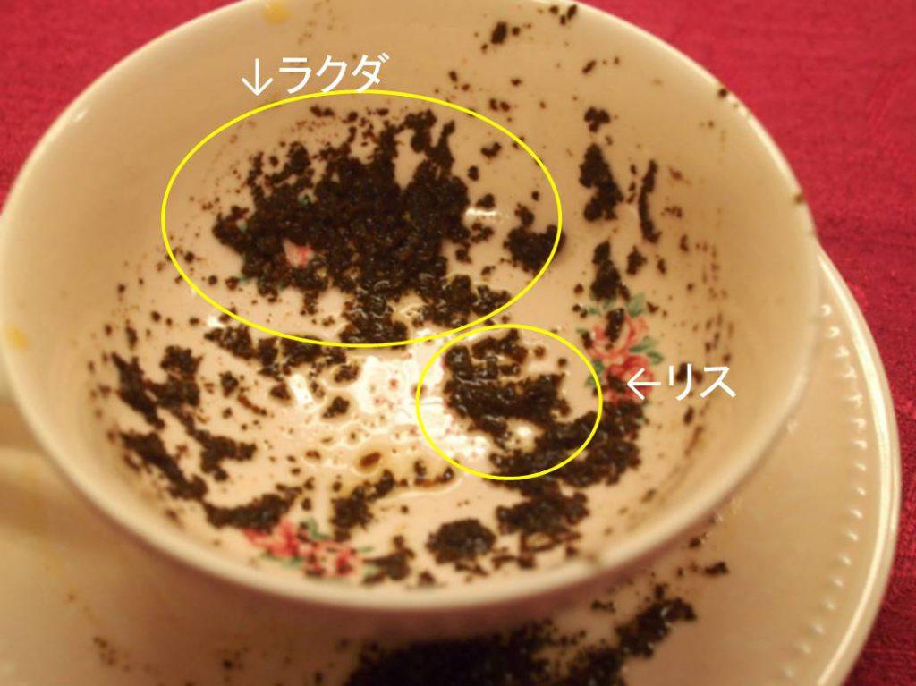 こんな感じでカップの周りに茶葉が張り付くので、その茶葉の形で占います。今回の私のカップはラクダとリスが見えました。こーゆーのは直感なので自分でそう見えたら、それを信じて占います(笑)