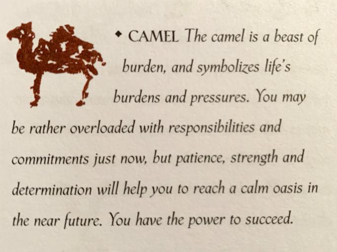 キャメルラクダは負担の獣であり、人生の負担と圧力を象徴しています。 あなたは今、責任とコミットメントでかなり過負荷になっているかもしれませんが、忍耐力、強さ、決意が近い将来に穏やかなオアシスに到達するのに役立ちます。 あなたには成功する力があります。