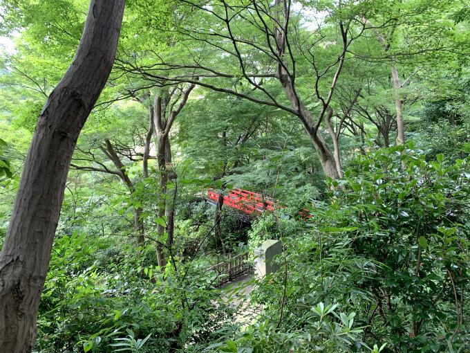 でも久々に緑の中を歩けて嬉しかったな!コロナで旅行に行けないけど、ちょっぴりトリップ気分を味わえました!