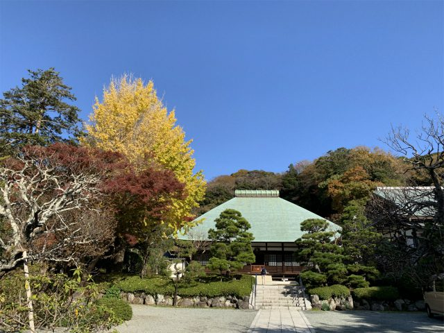真っ直ぐ進むと、浄明寺の本堂があります。本堂の左手のほうに歩いていくと