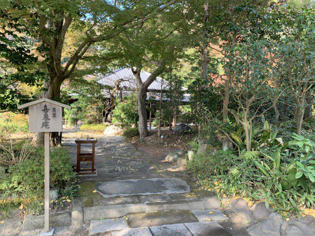 お抹茶がいただける「喜泉庵」があります。ここを道なりに右のほうへ行くと