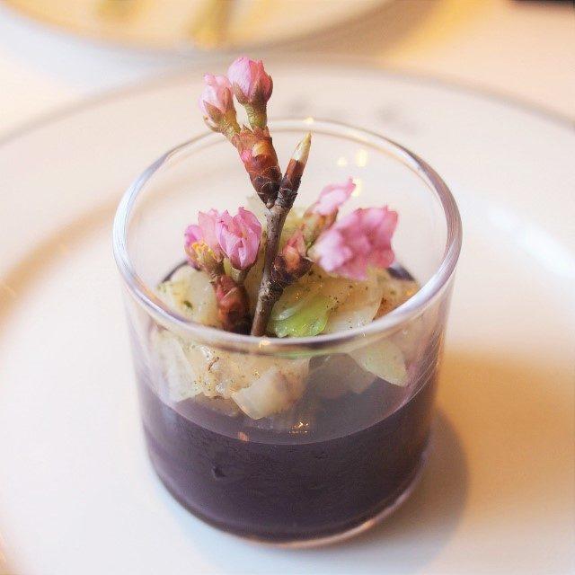 緑茶サクラ2021香るトマトのジュレ 帆立貝のグリエとポワロー(西洋ネギ)も入ってます。