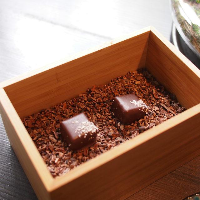 くまさんの下の箱にはココナッツを使ったチョコレートが潜んでいました。