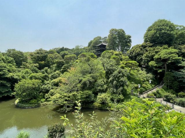 そこから少し歩くと、こんなに庭園が広がっています!