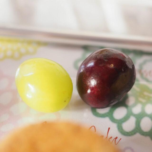 季節のフルーツシャインマスカットとアメリカンチェリー