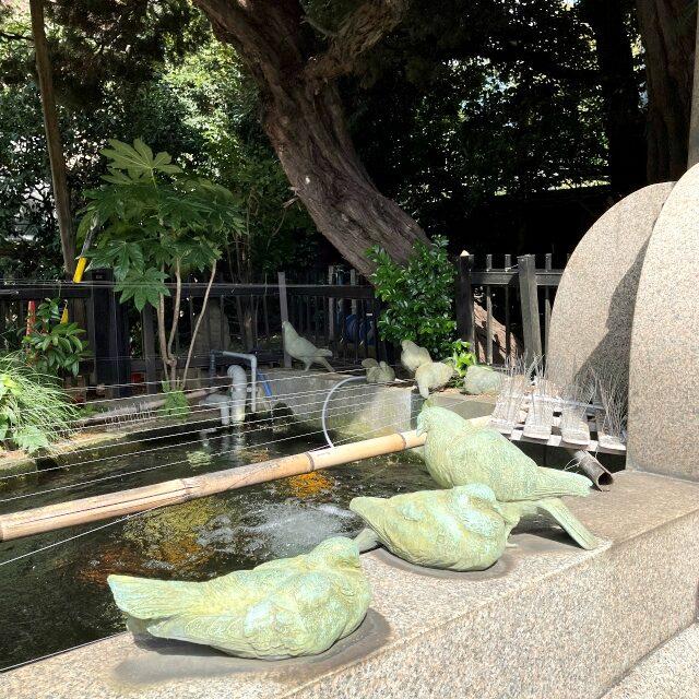 鳩山会館だから鳩や鳥のオブジェがいっぱい